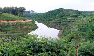 কমলগঞ্জের নান্দনিক প্রাকৃতিক সৌন্দর্য পদ্মছড়া লেক