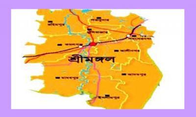 শ্রীমঙ্গল উপজেলা ও পৌর ছাত্রদলের আহবায়ক কমিটি অনুমোদন