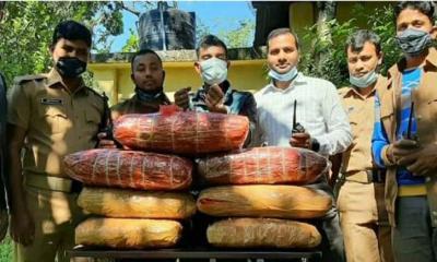 লালমনিরহাটে ৪০ কেজি গাঁজাসহ মাদক কারবারী আটক