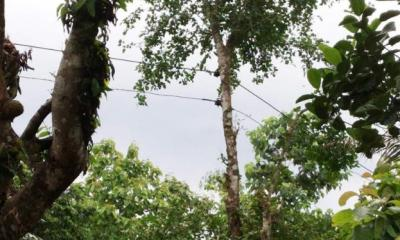 যেকোন মূহুর্তে প্রাণহানি ঘটতে পারে রাঙ্গামাটির লংগদুতে