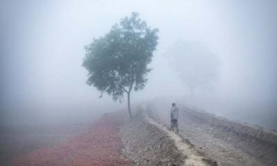 ১২ অঞ্চলে শৈত্যপ্রবাহ বয়ে যাচ্ছে